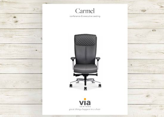Picture of Carmel brochure.
