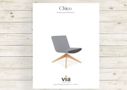 Picture of Chico brochure.