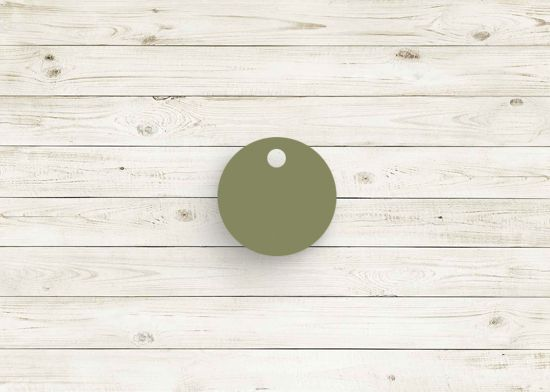 Picture of Sage green poly chip. #09