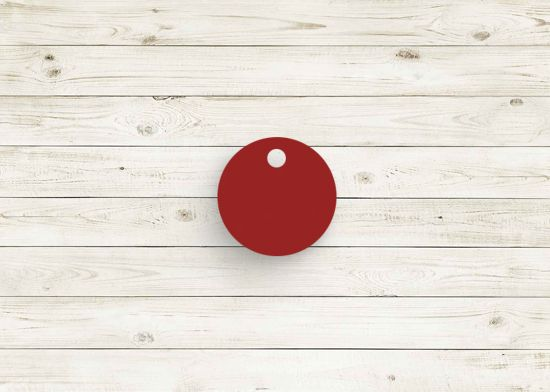 Picture of Red poly chip. #07